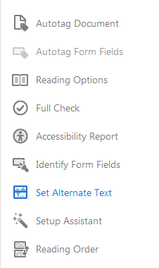 Accessibility tool bar. Set Alternate Text option selected.