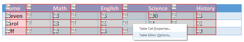 Drop down menu from right clicking on Table. Table Editor Options selected.