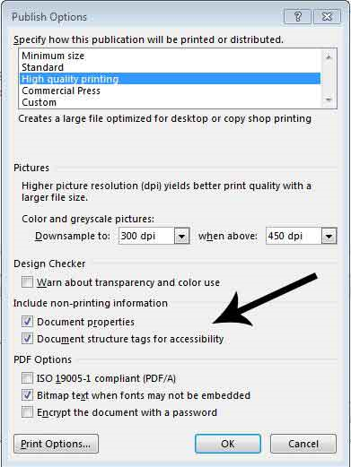 Document structure tags for accessibility checkbox in publish options prompt window.