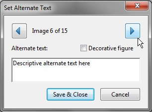 Screenshot of Set Alternate Text dialog box. Alternate text is entered into the field.